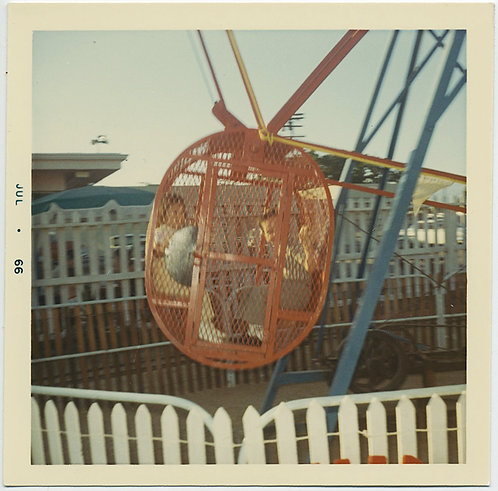 ALMOST ABSTRACT KIDS in FUN FAIR RIDE CAGE GREAT COLOR WHITE PICKET FENCE