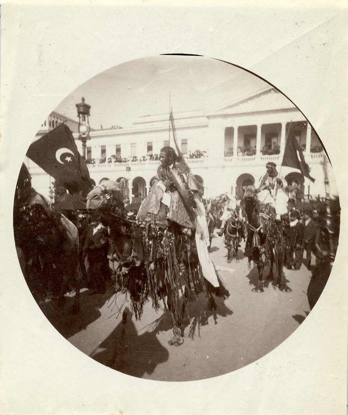 fp0811 (camel and turkish flag)