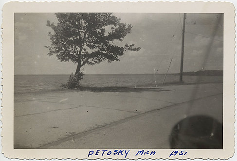 VERY GRAY BORING PETOSKY MICHIGAN LONELY TREE GLIMPSE of LAKE from ASPHALT 1951