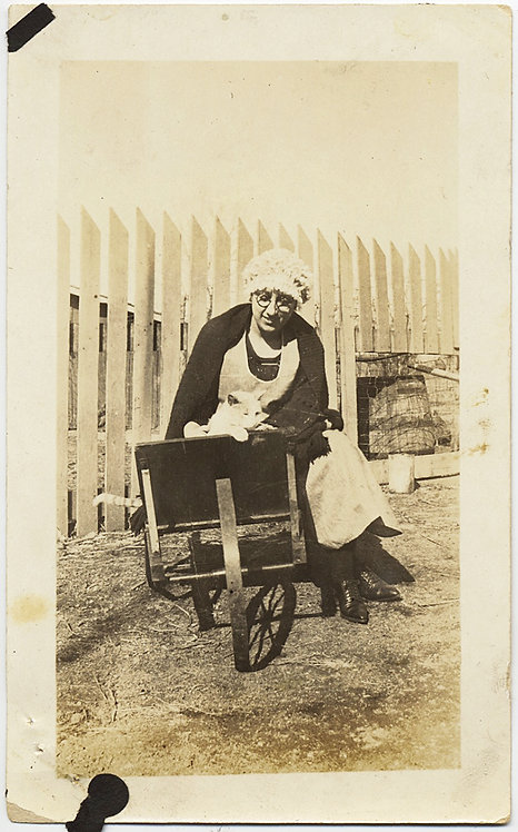 WOMAN in CAP near PICKET FENCE looks after KITTY CAT in WHEELBARROW