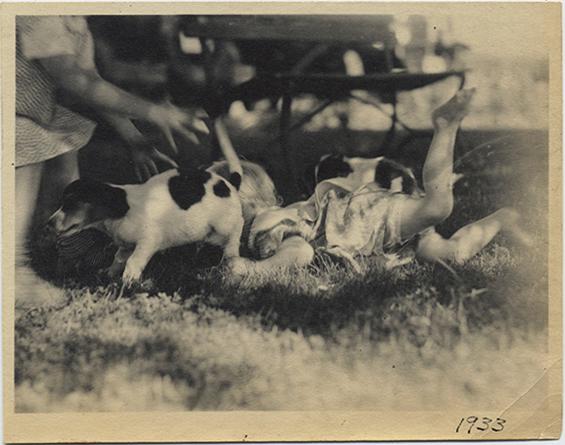 fp3997(BeaglePups_Children)