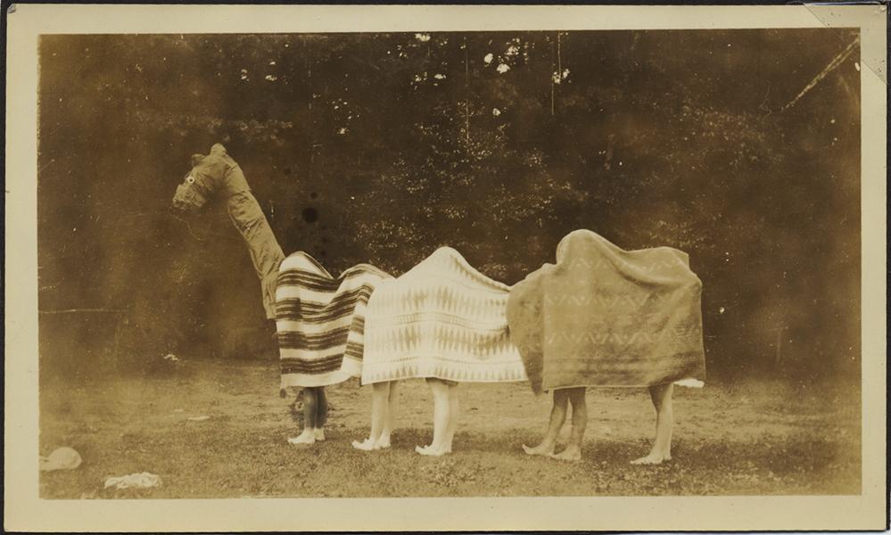 fp7945(Horse-Carnival)