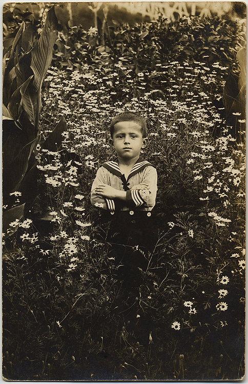RPPC SUPERB LITTLE BOY in SAILOR SUIT PORTRAIT in FIELD of FLOWERS DAISIES