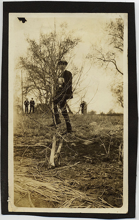 GREAT COMPOSITION! MAN in TREE while SPECTATORS WATCH!