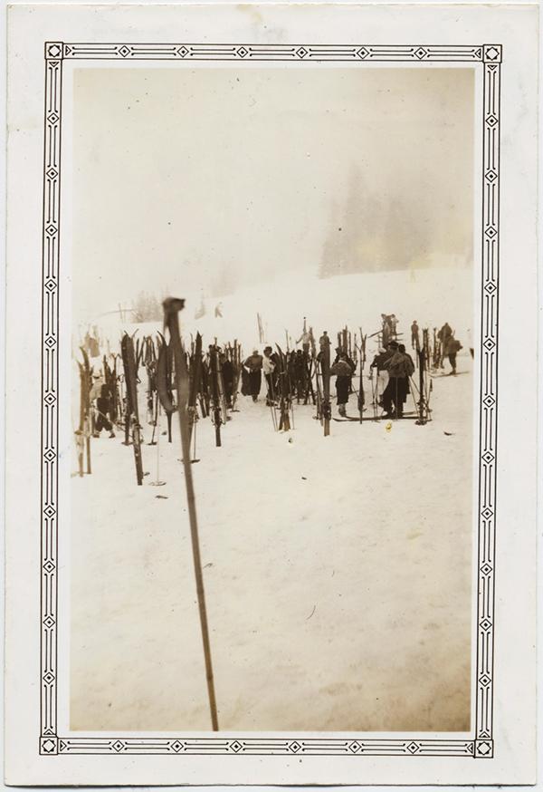 fp10538(Ski-Poles)