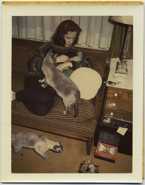 POLAROID STRANGE ANIMAL-LOVING WOMAN CUDDLES PARROT on COUCH CURIOUS CATS ABOUND