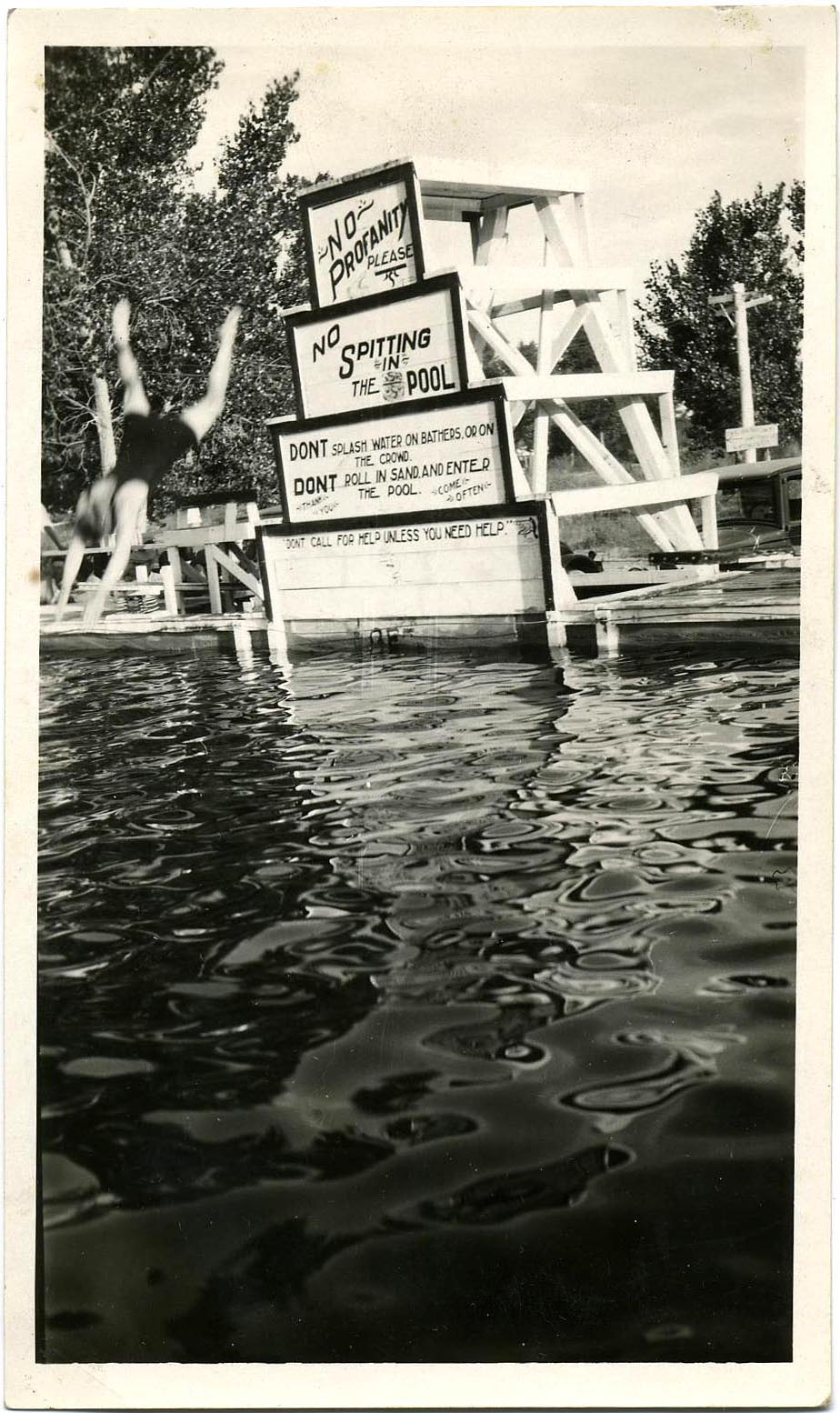 fp1036 (diver & pool w restrictions)
