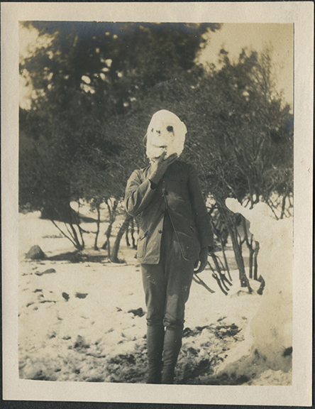fp4738(Snow_Mask)