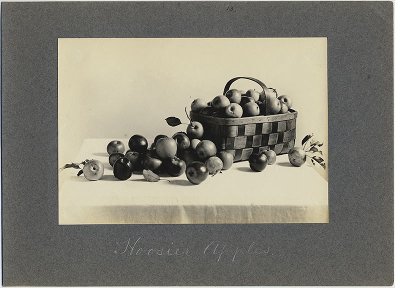 fp4996(StillLife_Apples_Basket_CaptionHoosierApples)