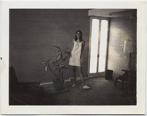 MID CENTURY MODERN LANKY TEENAGE GIRL in SUNLIT INTERIOR w HOUSEPLANT POLAROID