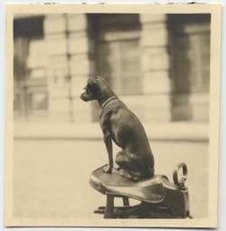 fp4428(SleekDog_Seated)