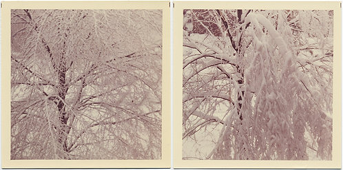 SNOW DIPTYCH #1 Photo fantasy in WHITE!  ABTRACT!