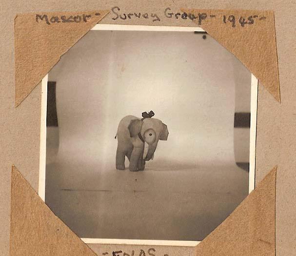 fp0268(ElephantMascot_Enos)
