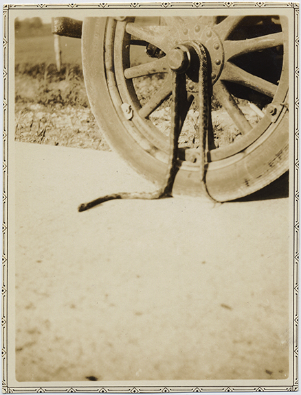 fp6598(SnakeOnWheel)