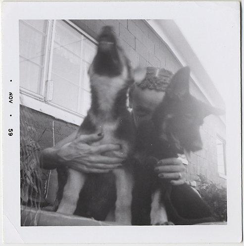 NAUGHTY BASHFUL WOMAN HIDES behind PARKING CUTE GERMAN SHEPHERD DOGS ALSATIANS