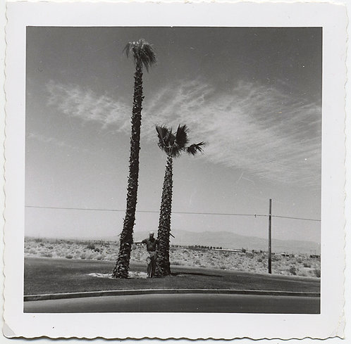 MAN DWARFED STANDING under TWO TALL SCRAGGLY PALM TREES DESERT LANDSCAPE