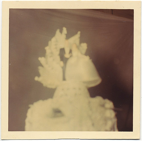 SUPERB OUT of FOCUS GREAT WEDDING CAKE BRIDE GROOM RENDERED ABSTRACT