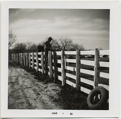 GREAT GRAPHIC COMPOSITION! Moody COWBOY straddles FENCE!