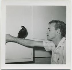 fpUncat(Bird-on-Arm)