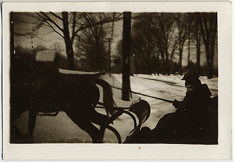 DASHING THROUGH THE SNOW in a ONE HORSE SLEIGH! TINY FABULOUS SILHOUETTE ACTION!