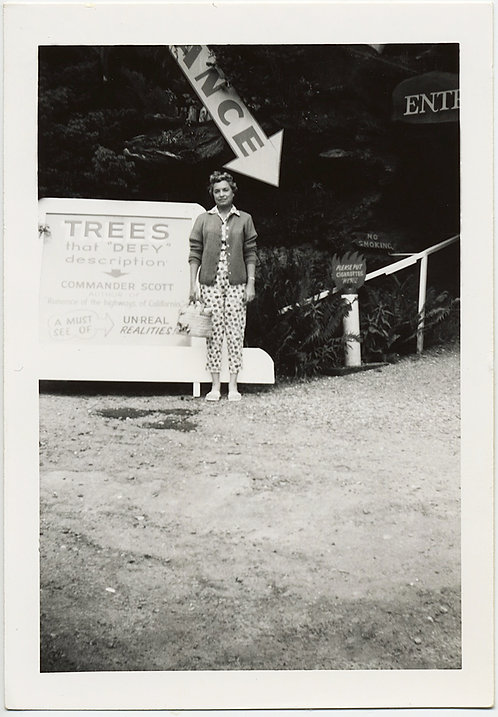 "GREAT SIGNAGE ARROW POINTS at WOMAN REDWOOD TREES that ""Defy description"""