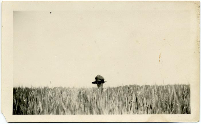 fp1805 (woman-wheatfield)