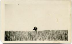 fp1805 (woman-wheatfield)