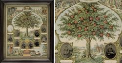 fpUncat(Geneaology_Tree)