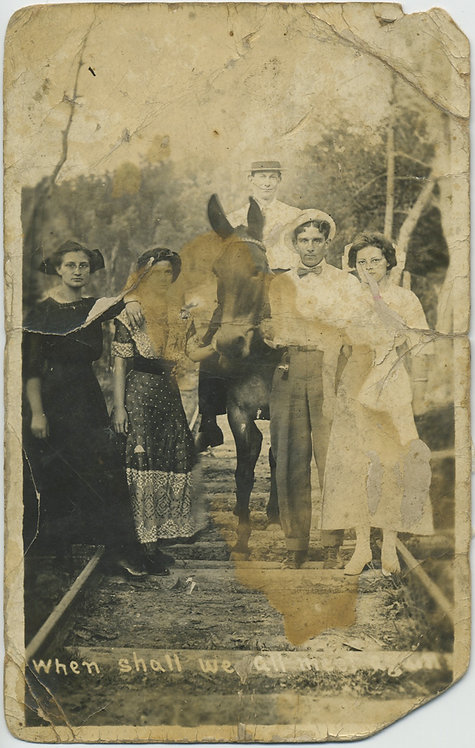 WONDERFUL CHERISHED DISTRESSED GROUP PORTRAIT HORSE & RAILWAY TRACKS