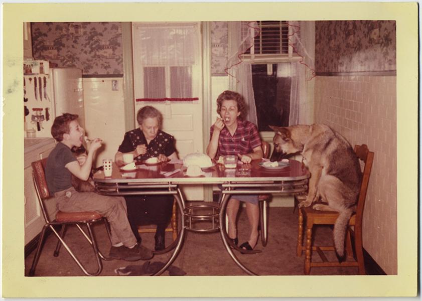 fp10388(Dog-Eats-Kitchen-Table)