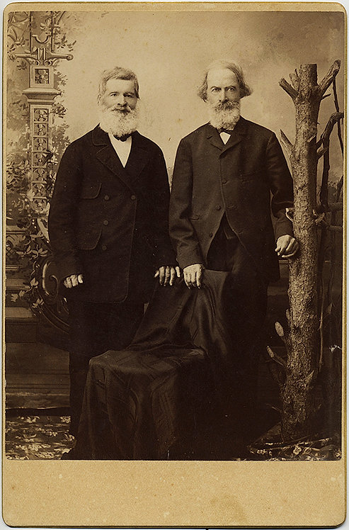 CABINET CARD! 2 OLD MEN W BEARDS & HIDDEN CHAIR & DEAD TREE!