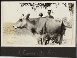 fp10369(Cow-Couple-Caption)