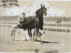 fp2672(PF_Horse&Chaise_MillardSanders_Tinted)