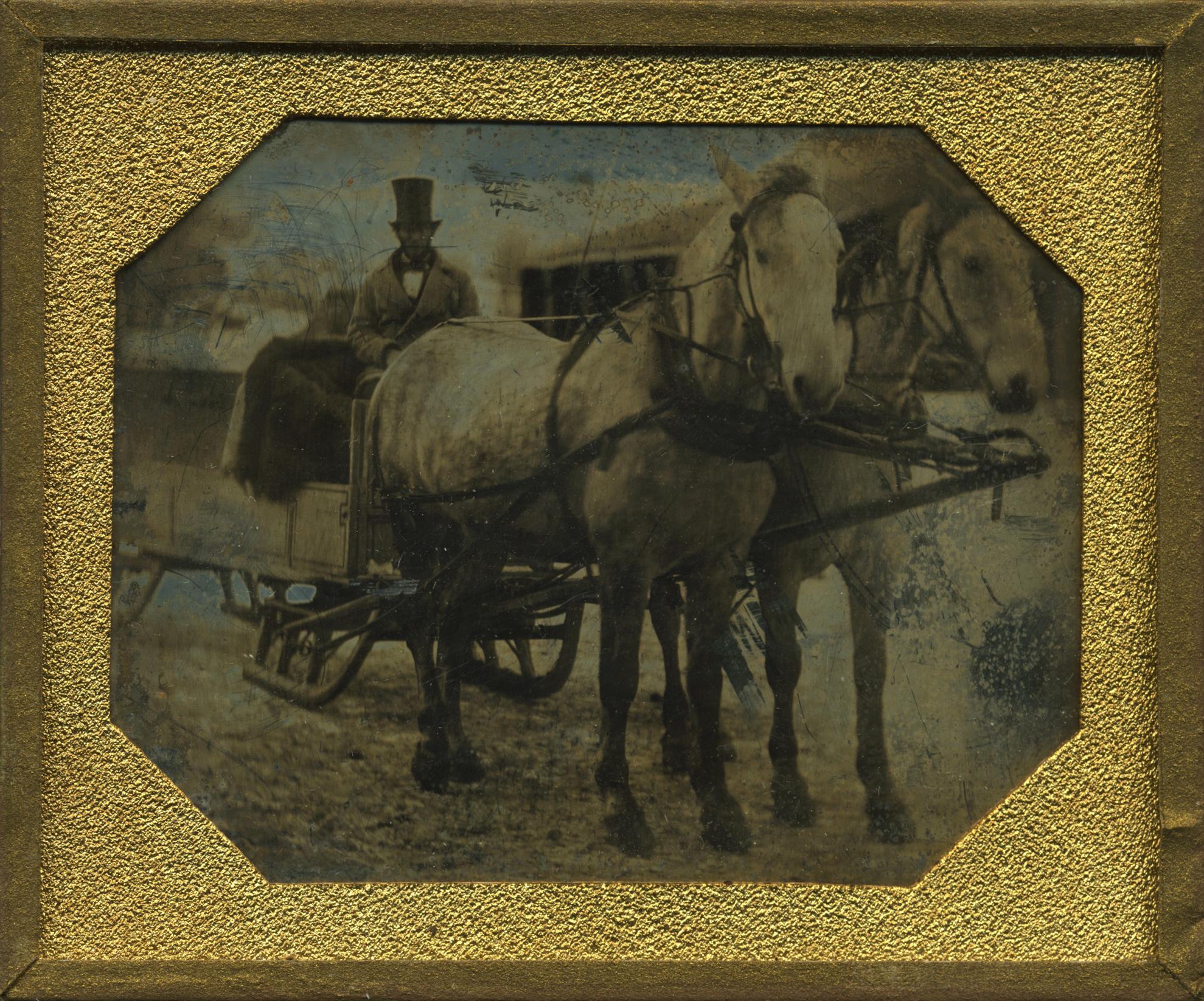 (DG-Sixth-Horse-Sleigh)