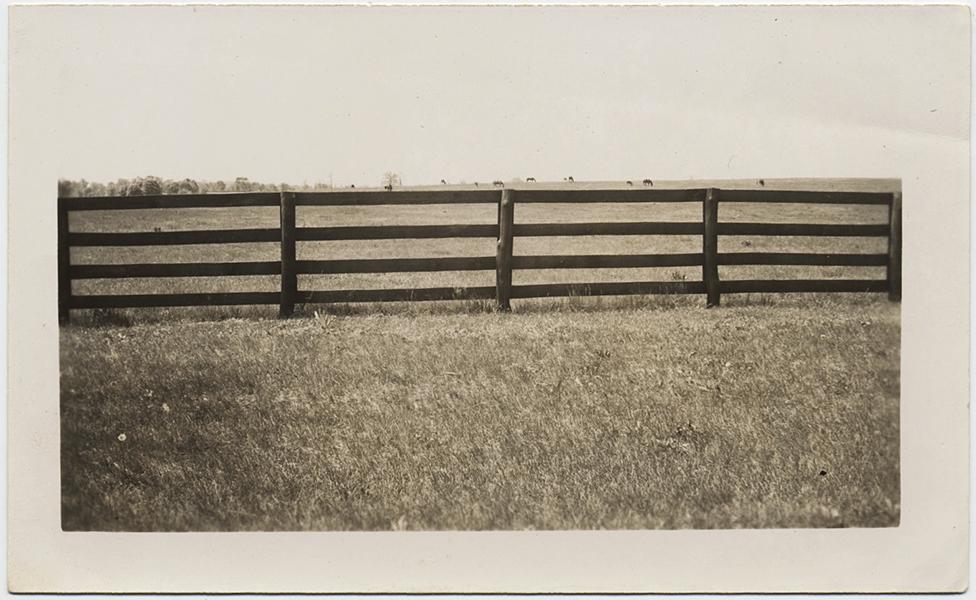 fp10295(Fence-Field)