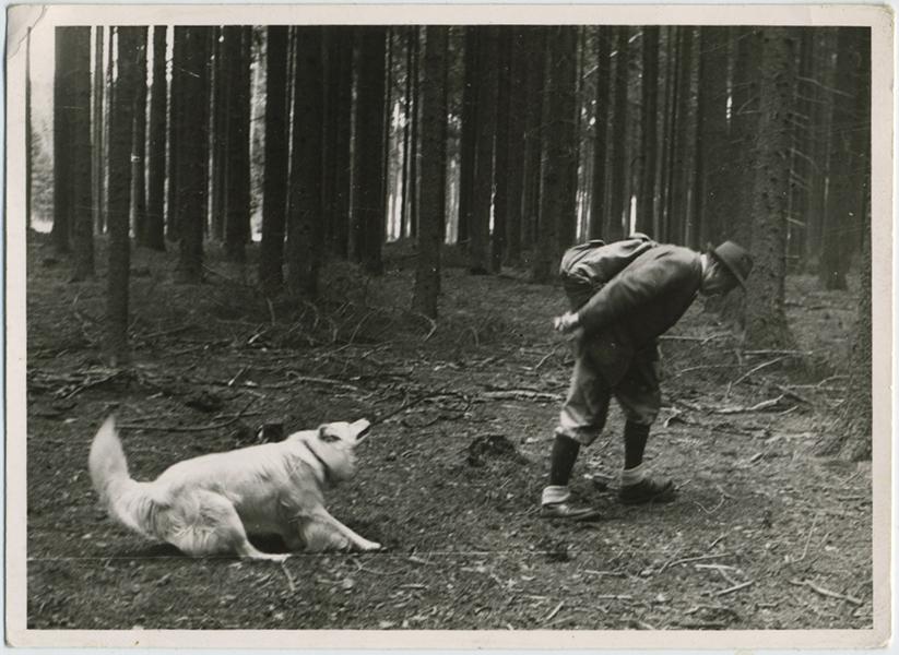 fp8344(Man-Drages-Dog)