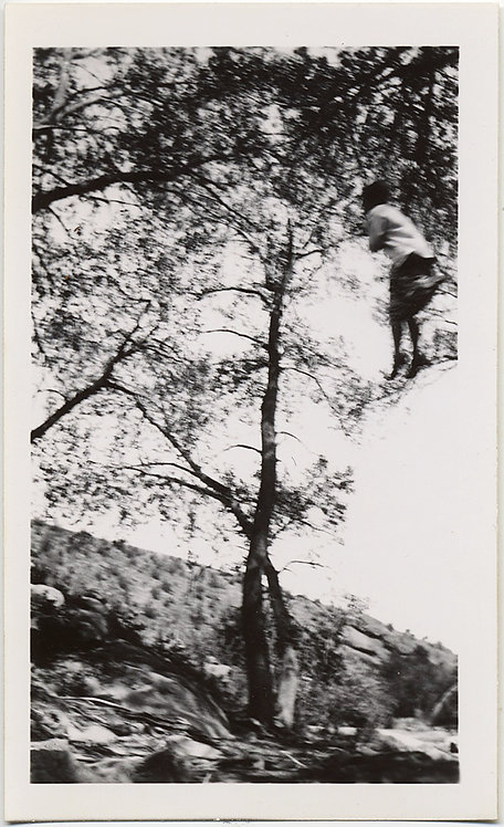 WEIRD UNUSUAL STRANGE IMAGE WOMAN SUSPENDED in TREE??