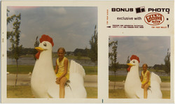 fp10394(Bonus-Photo-Girl-Chicken)
