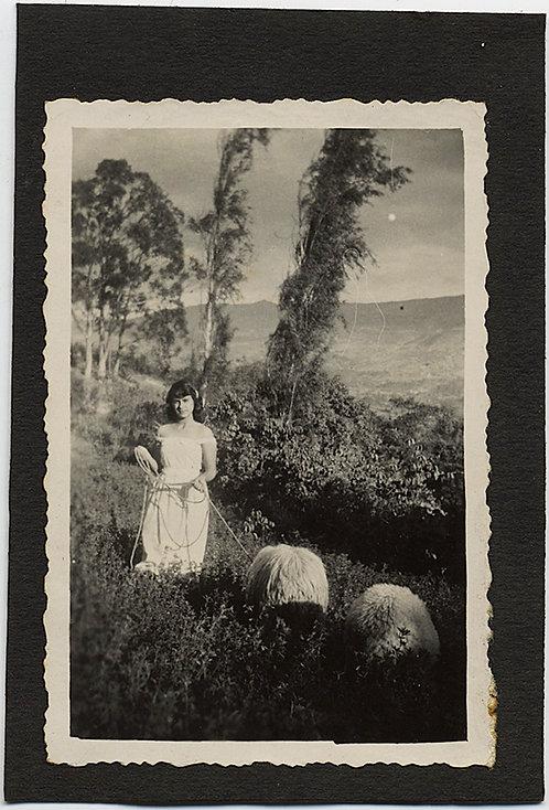 GORGEOUS PASTORAL PRETTY GIRL SHEPHERD HERDS SHAGGY SHEEP on MOUNTAINSIDE