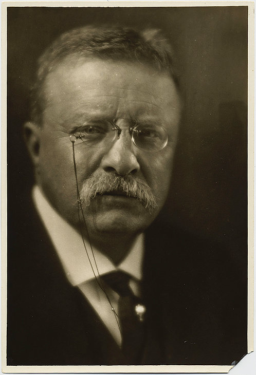 STRONG PORTRAIT of TEDDY ROOSEVELT