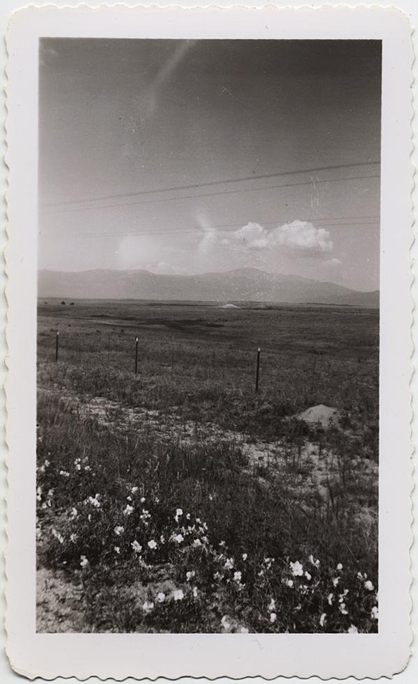 fp10330(Landscape)