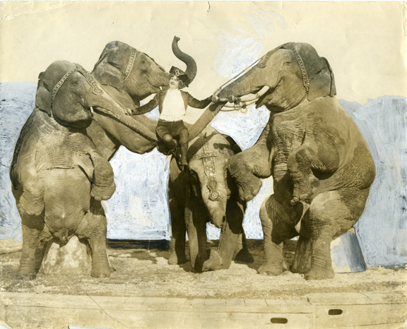 fp0843 (woman performer w elephants)