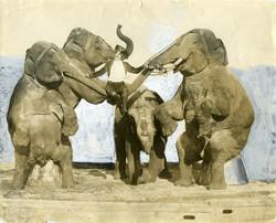 fp0843 (woman performer w elephants)