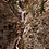Thumbnail: BROADMOOR SEVEN FALLS RPPC South Cheyenne Cañon, Colorado Springs, CO WATERFALL