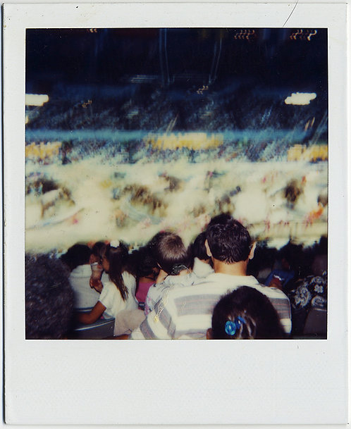 FABULOUS LIGHT MOVEMENT STUDY CROWD WATCHES SPORTS GAME INDOOR STADIUM POLAROID