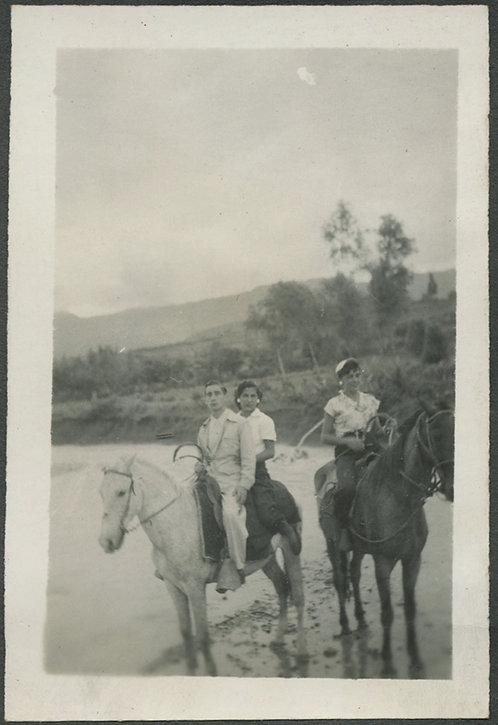 GORGEOUS, IMPRESSIONISTIC Threesome on HORSEBACK
