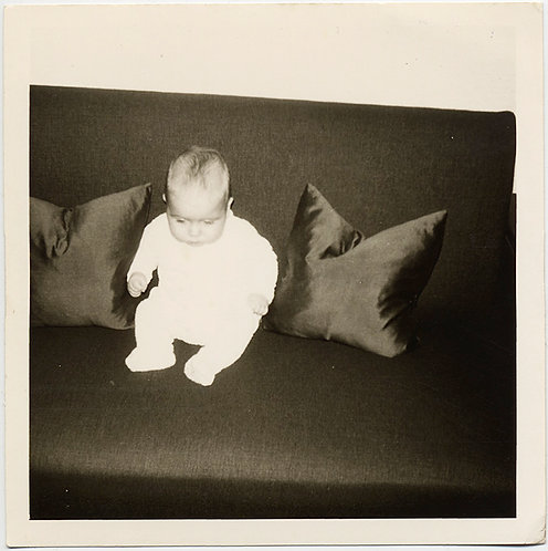 WHITE BABY POPS on 50 SHADES OF GREY MID-CENTURY MODERN COUCH