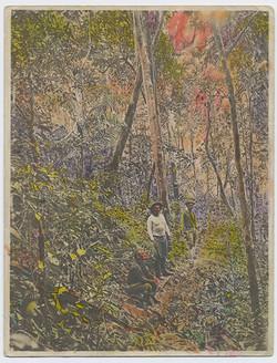 fp3467(Men_JungleLandscape-tinted)