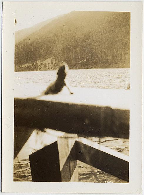 LOVELY GECKO LIZARD SUNS ITSELF on WOODEN RAILING at LAKE FOCUS