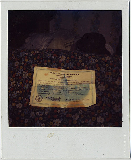 UNUSUAL POLAROID! STAINED CERTIFICATE of BIRTH on DIRTY BEDSPREAD